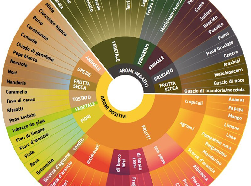The aromas of coffee: where do they come from?